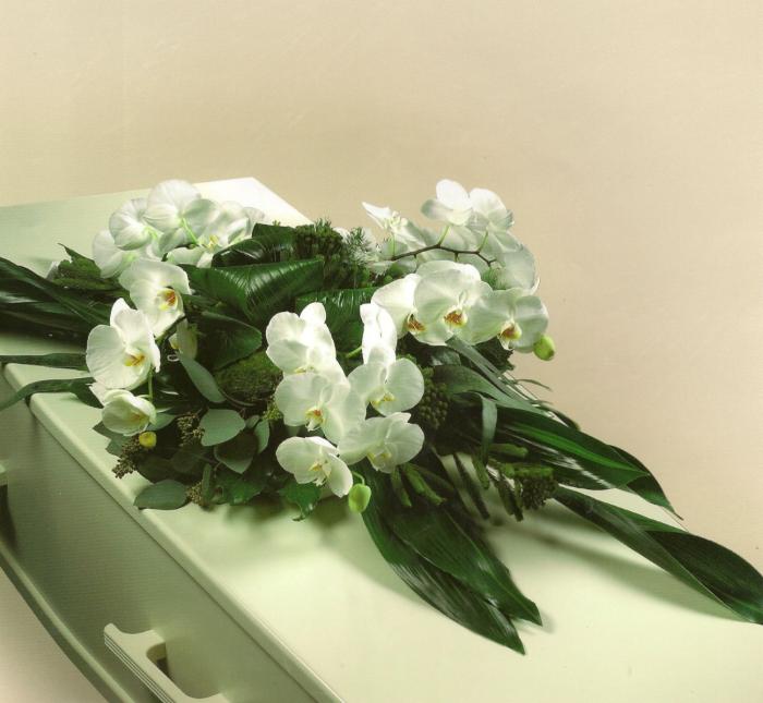 Witte Phalaenopsis orchidee met diverse bladmaterialen € 175,00