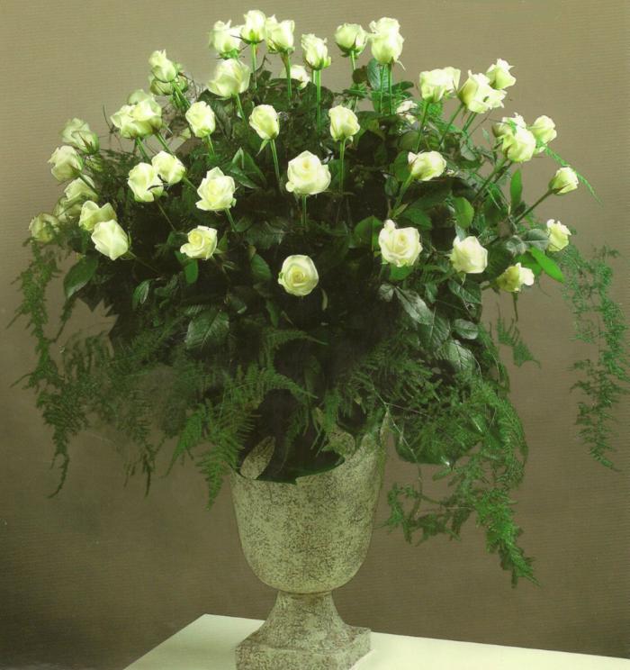 Vaas met witte rozen, in diverse kleuren te leveren. Bruikleenvaas in overleg € 140,00