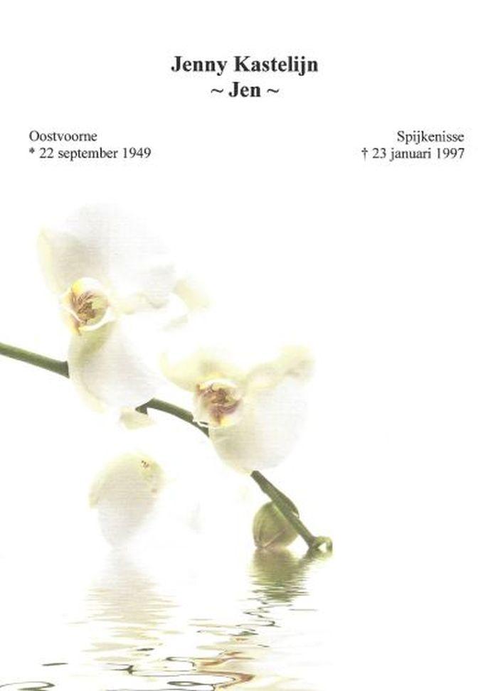 Orchidee groot